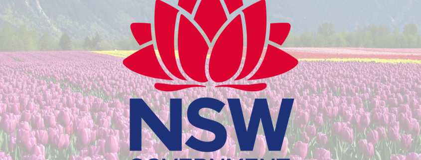 NSW Skilled Nominated visa (subclass 190) Nomination guidelines